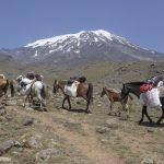 """Der Berg Ararat liegt mitten in """"Kurdistan"""", dem Gebiet, das die Kurden für sich beanspruchen. Noch heute kämpfen sie für einen eigenen Staat – Zeichen, der Vielfältigkeit der Türkei. Foto: fotolia ©Klaas Köhne #77753609"""