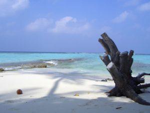 Asdhoo Island, Malediven