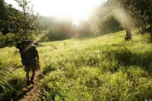 Wandern im Sonnenschein