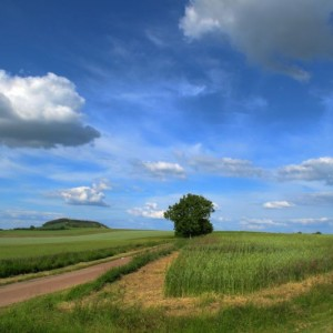 Landschaft, Burgund, Frankreich