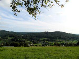 Natur, Odenwald, Hessen, Deutschland