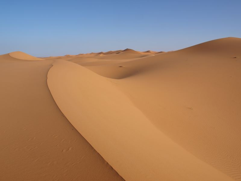 Sahara Wüste Afrika