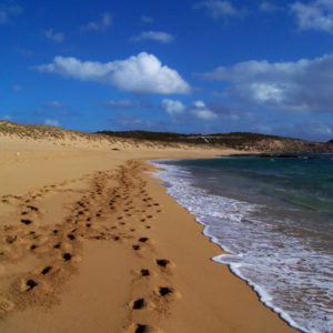 Salmon Fishing Beach, South Australia