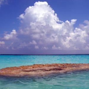 Strand Bermudas