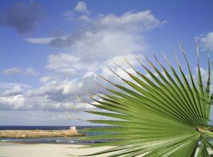 Strand, Sousse, Tunesien