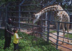 Zoo, Abuja, Nigeria