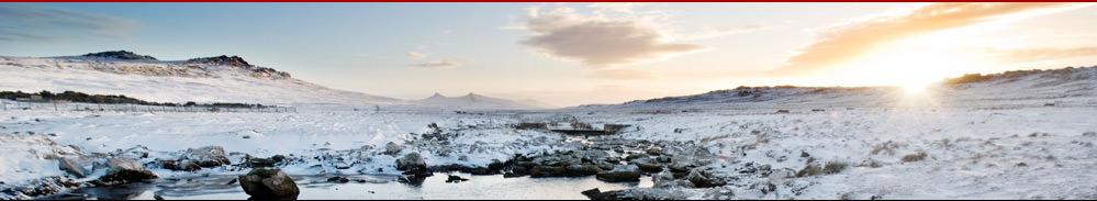 Tourismus.de - Falklandinseln