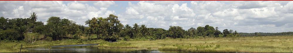 Tourismus.de - Guyana